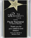 Black/Gold Star Acrylic Award Recognition Plaque Sales Awards